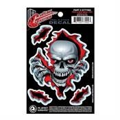 Planet Waves GT77002 Peak a Boo Skull Gitar Sticker